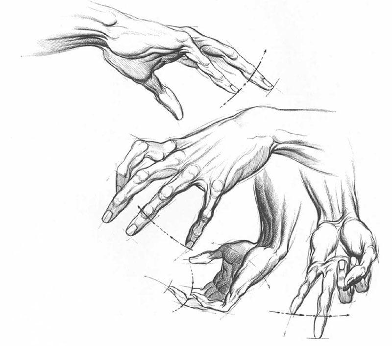кисти рук академический рисунок - Поиск в Google   drawing   Pinterest