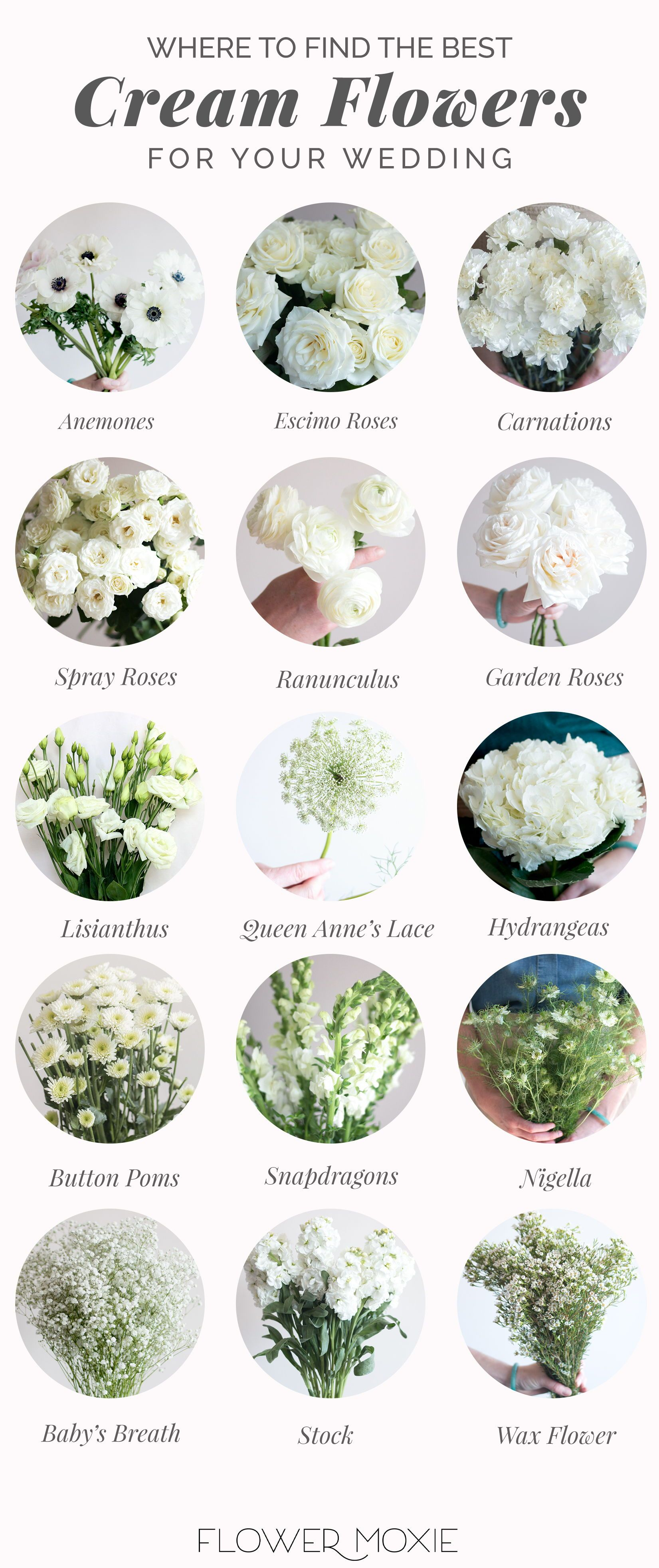 Cream And White Wedding Flowers Bulk Fresh Wedding Flowers In 2020 Wedding Flower Packages Cream Wedding Flowers White Wedding Flowers