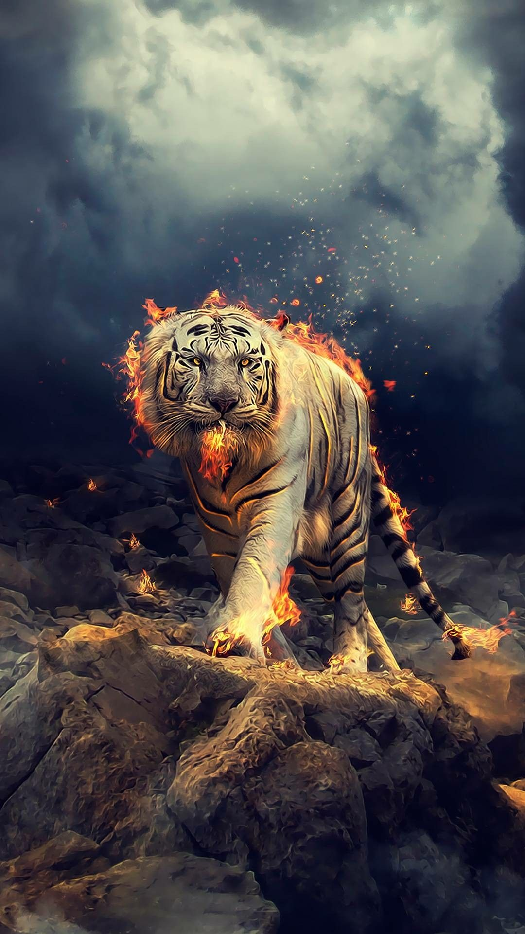 Fire Tiger Tiger Wallpaper Wild Animal Wallpaper Lion Wallpaper