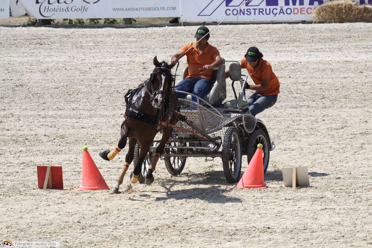 Feira do Cavalo de Ponte de Lima