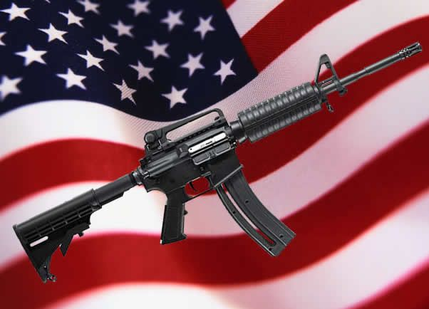 Search for more firearms accessories. Click on the flag.