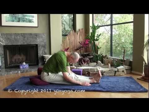 caterpillar explained yin yoga website yinyoga  yin