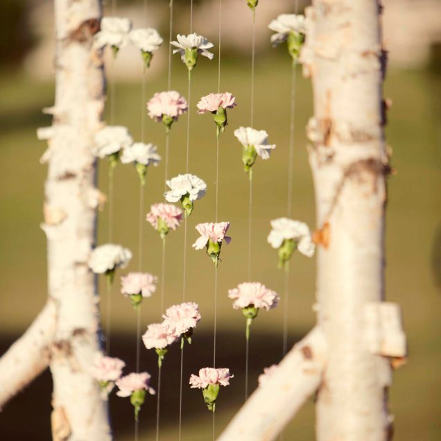 Wedding Altar Curtains: The Birchwood Altar With A Floating Floral Curtain