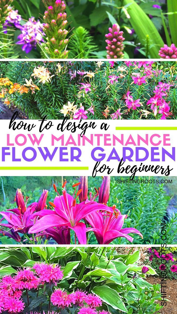The Design Of An Easy Care Flower Garden With Shrubs Does