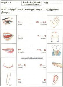 Sample Tamil Worksheets Harry Styles Worksheets Preschool