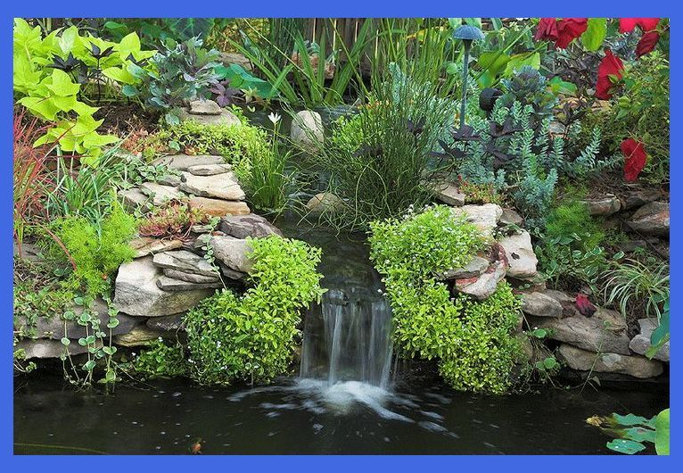 Do It Yourself Backyard Water Garden Ideas - Building a ...
