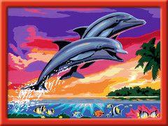 Welt Der Delfine Malen Basteln Produkte Fur Kinder Ravensburger