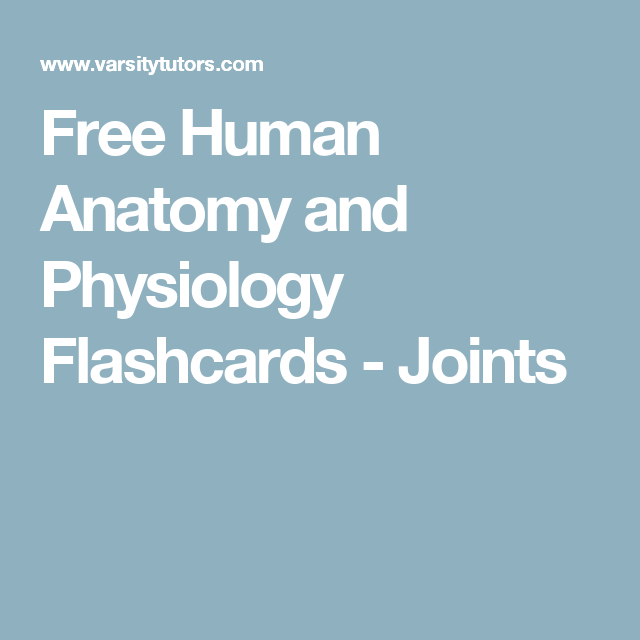 Free Human Anatomy And Physiology Flashcards Joints Anatomy And
