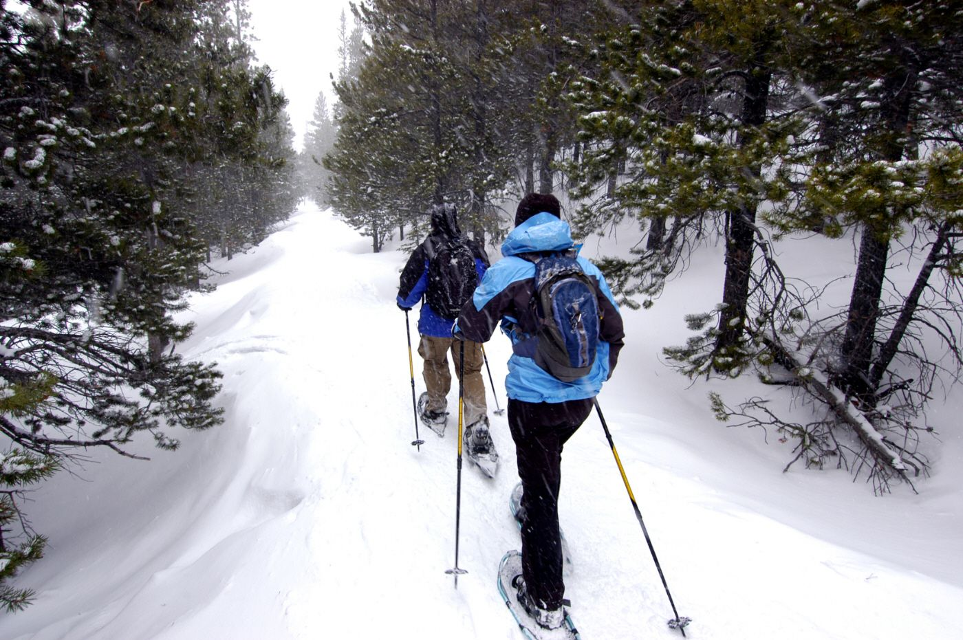 Ease your walking on snow to explore snowy mountain with