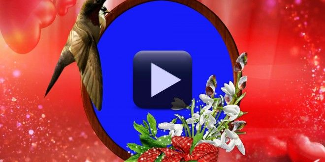 Wedding Background Video Effects HD | Motion Graphics | Pinterest ...