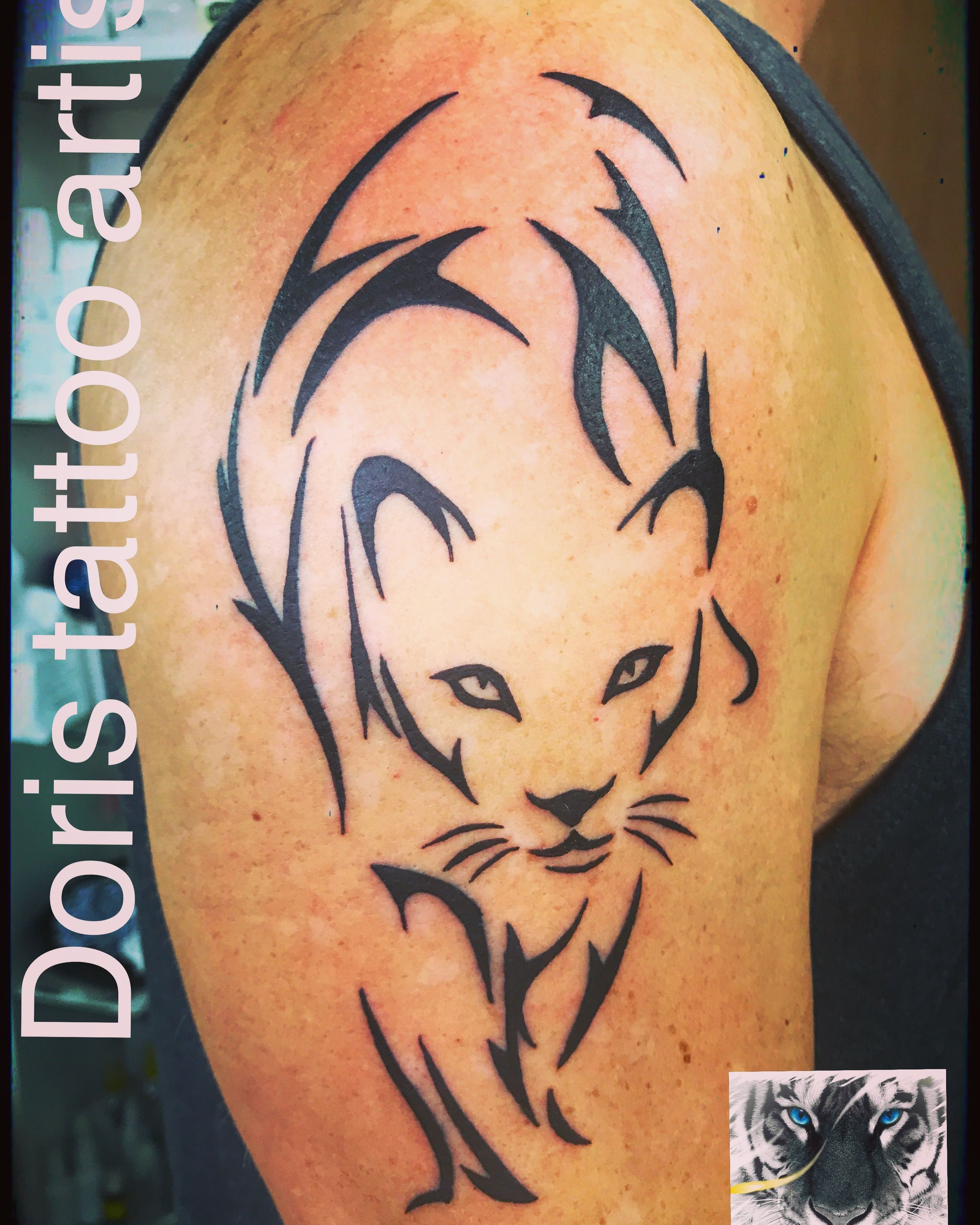 726668227 Puma arm tattoo | Doris aluf - tattoo Israel / קעקועים דוריס-טאטו ...