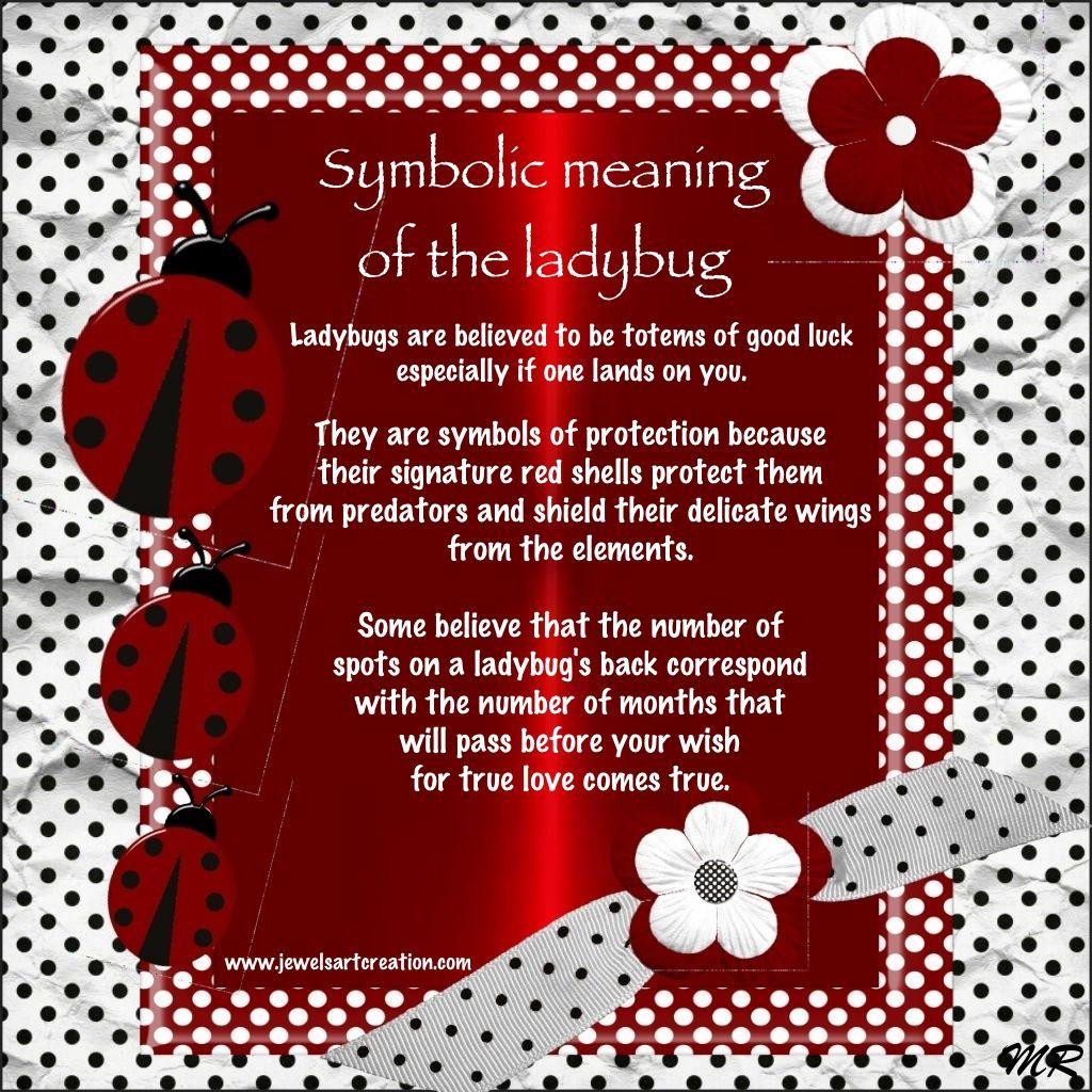 Pin by deb gossett on love | Ladybug quotes, Ladybug, Ladybug meaning