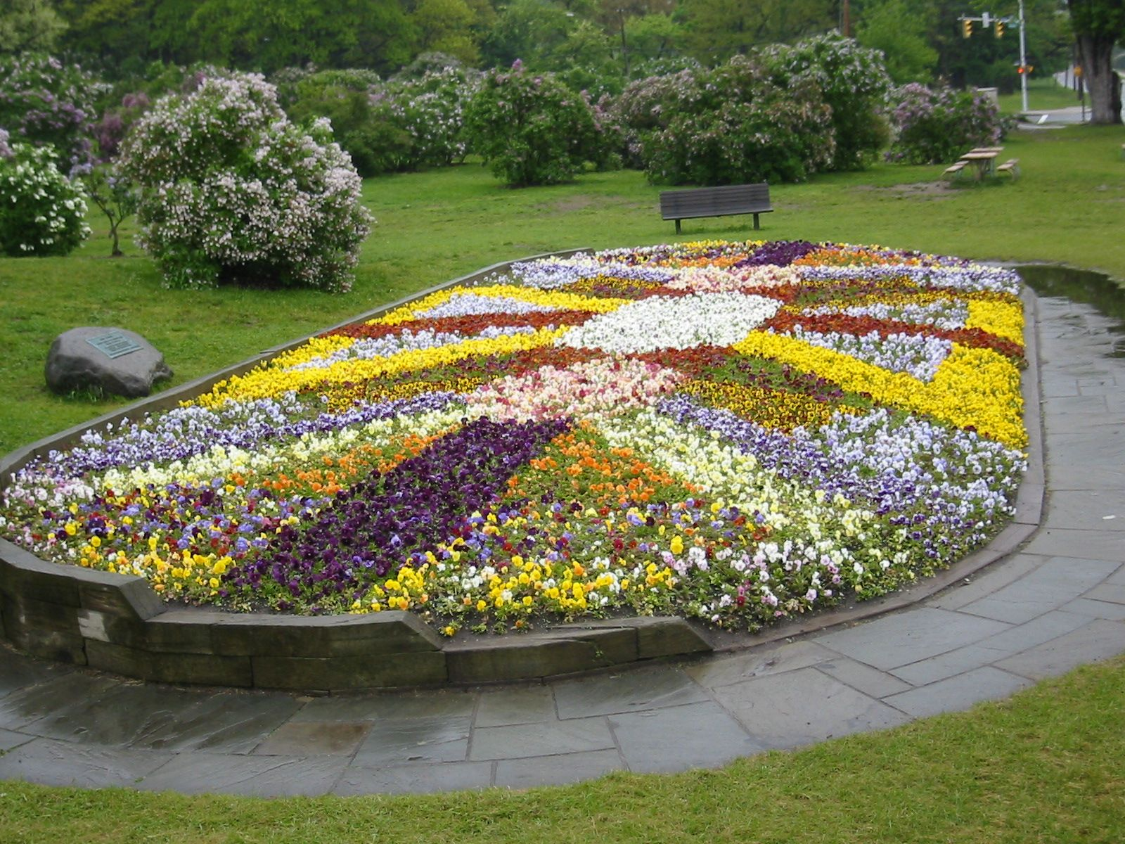 More Pansy Bed Ideas Flower Garden Borders Flower Beds Flower Garden