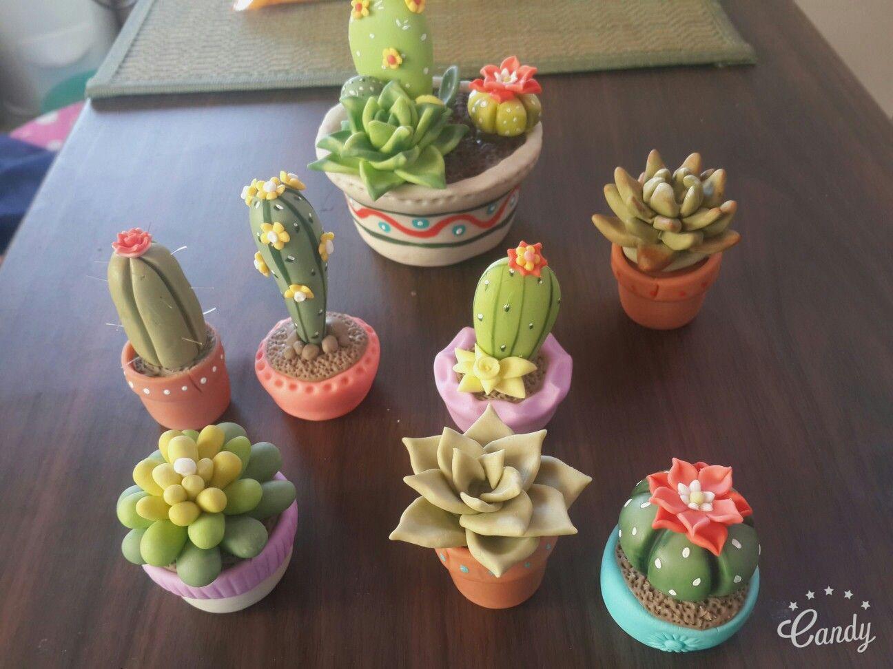 Cactus y suculentas trabajo de porcelanas fr a para - Macetas de porcelana ...