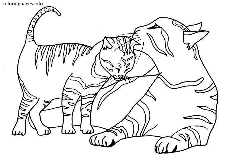 Tabby Cat Coloring Pages Coloring Pages Pinterest Gatito Para