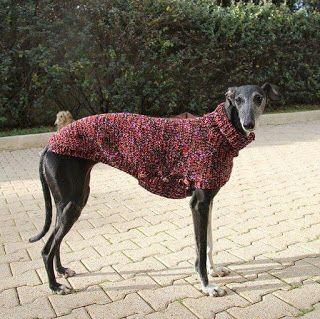 Galgos Y Punto Dog Coats Dog Sweaters Dog Clothes
