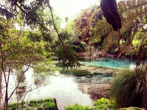 Hamurana spring, Rotorua, New Zealand ☂ ☻  ☻. ☂