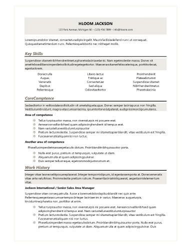 Clean-Shades of Gray Resume Templates Pinterest Simple resume - google docs resume templates