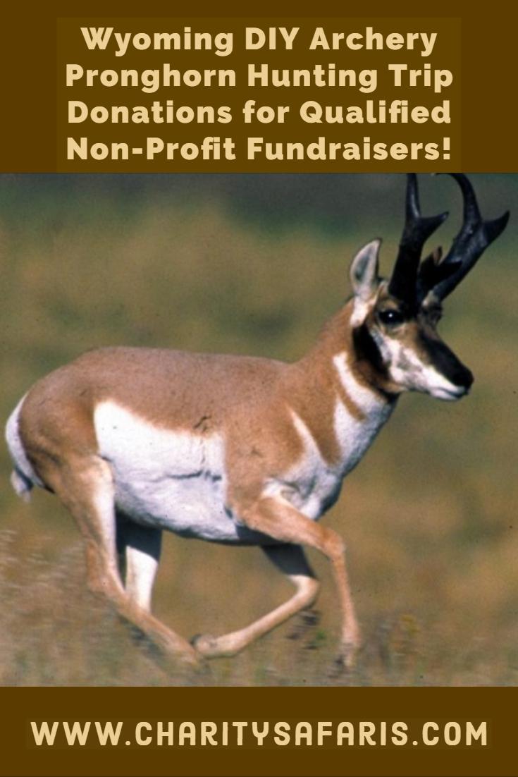 Wyoming Diy Archery Pronghorn Antelope Hunt Valued At