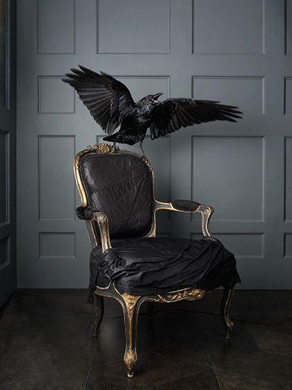 Scary Hair Home Decor Rock Room Black Dark Amazing Bird Punk Alternative  Decor Raven Furniture Goth