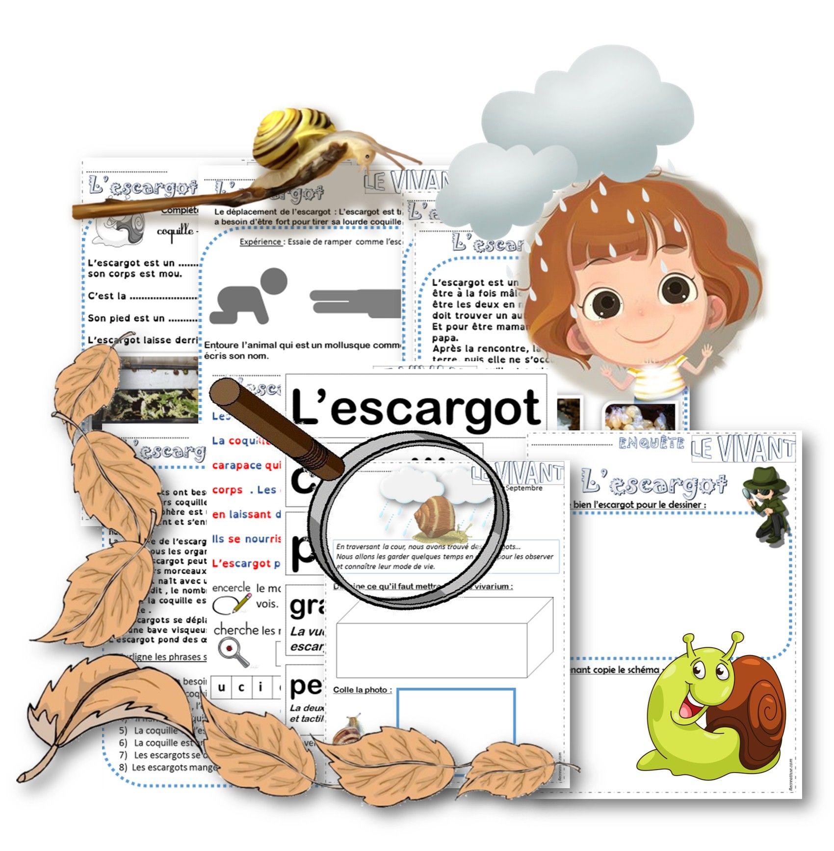 Extrêmement Escargots et langages en maternelle, petite moyenne et grande  IJ65