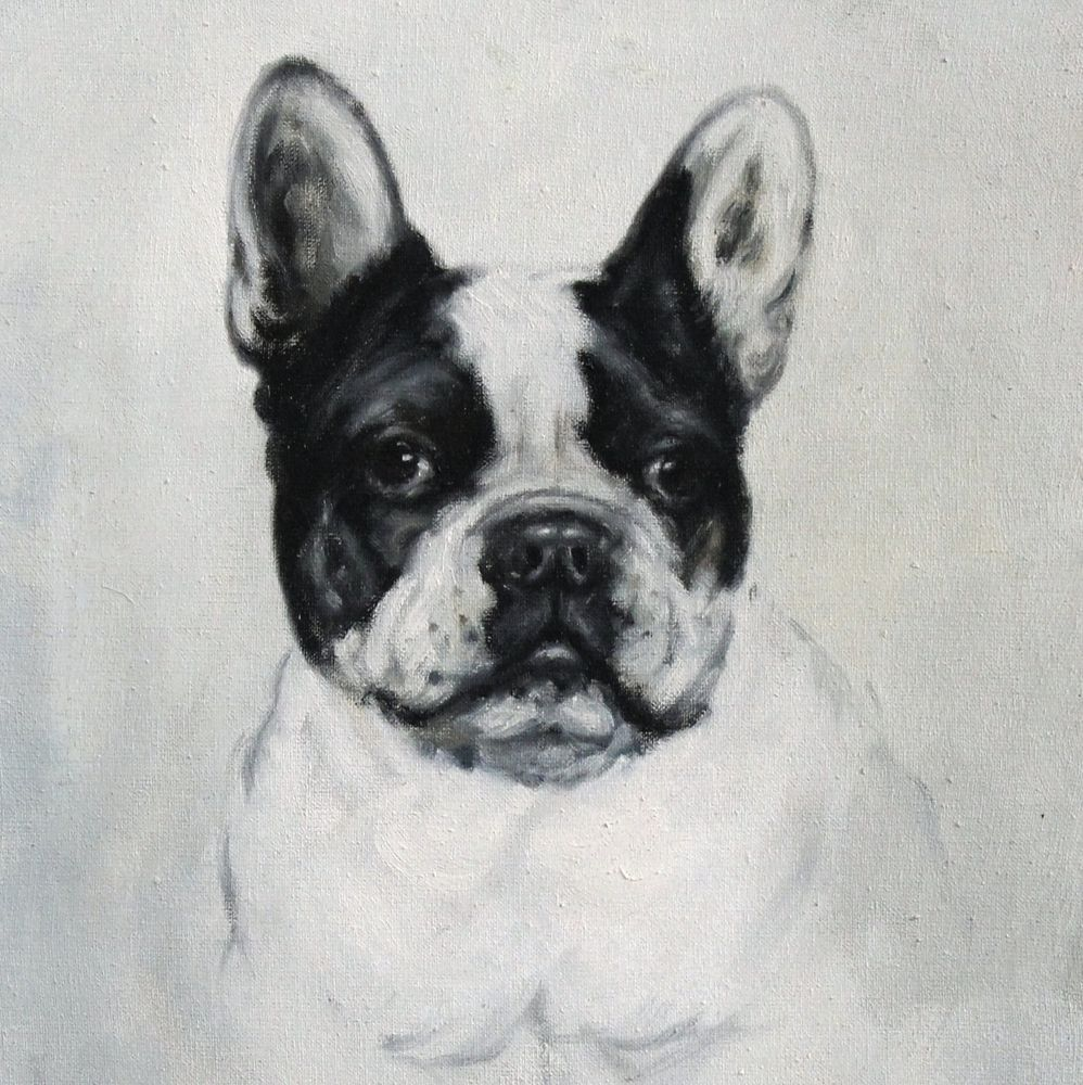 Original antique oil painting on canvas French Bulldog 20th with old ...