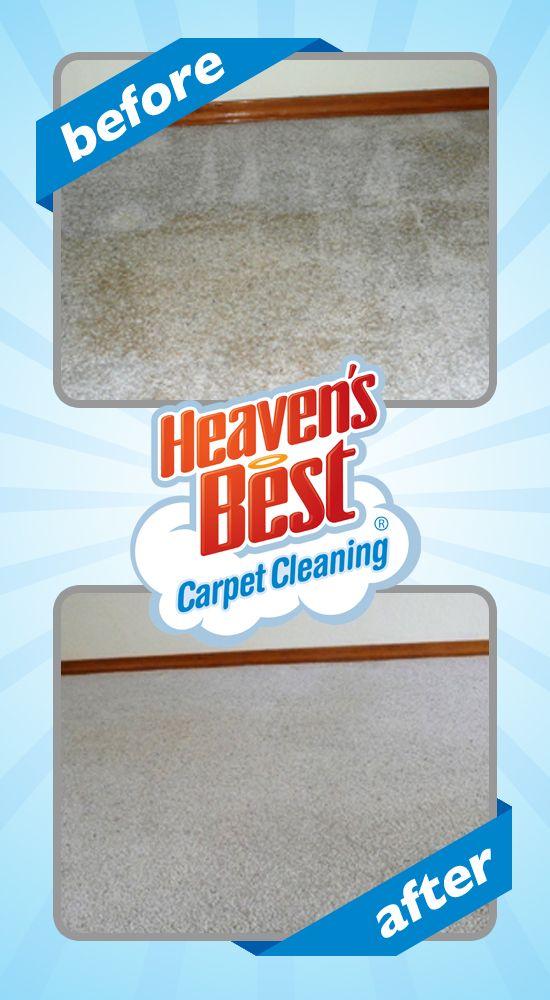 Visit Our Website At Http Jacksonvillenc Heavensbest Com How To Clean Carpet Diy Carpet Cleaner Carpet Cleaning Pet Stains