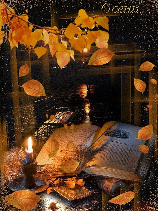 Казанская, спокойной ночи картинки гифы анимированные новые осень