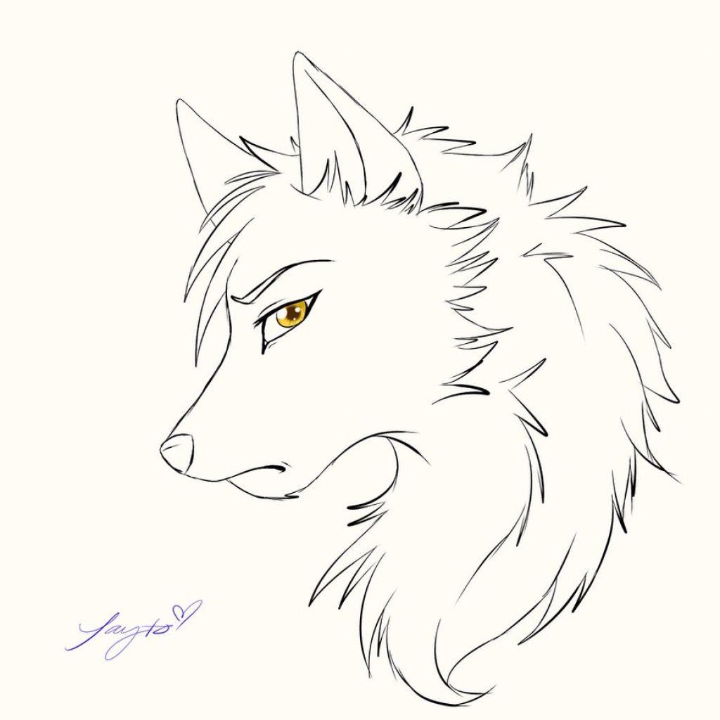 Https Www Google Com Search Q Line Art Wolf Client Firefox B 1 Tbm Isch Source Iu Ictx 1 Fir 29pcedpofya8 Anime Wolf Drawing Wolf Sketch Cartoon Wolf Drawing