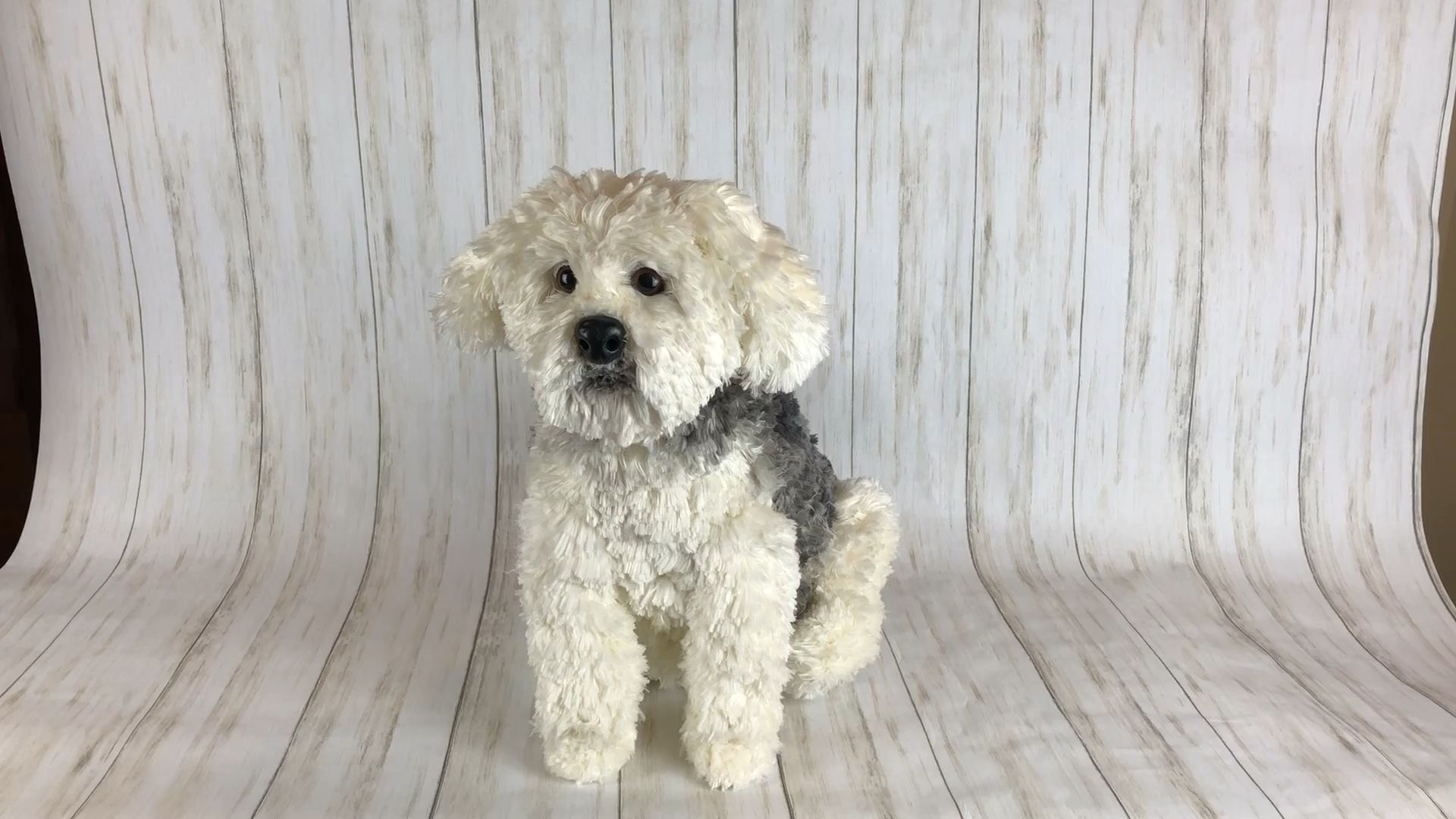 Crochet Maltese Terrier Amigurumi | Crochet designs, Crochet dog ... | 1080x1920
