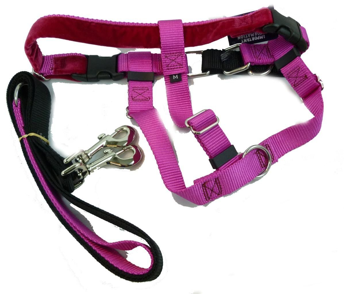 Freedom no pull harness and leash training kit raspberry