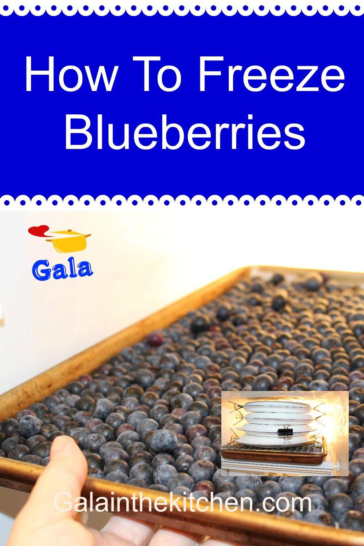 How i freeze fresh blueberries in ziplock bags gala in