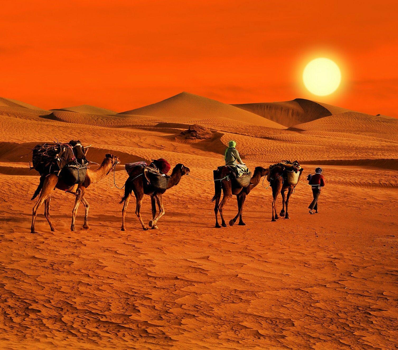 Pin de Amal Shalaby-Gharbo en Desert | Pinterest | Naturaleza y Paisajes