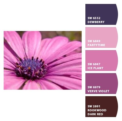 Pretty Purple by AutEvDesigns using Chip It! by Sherwin-Williams