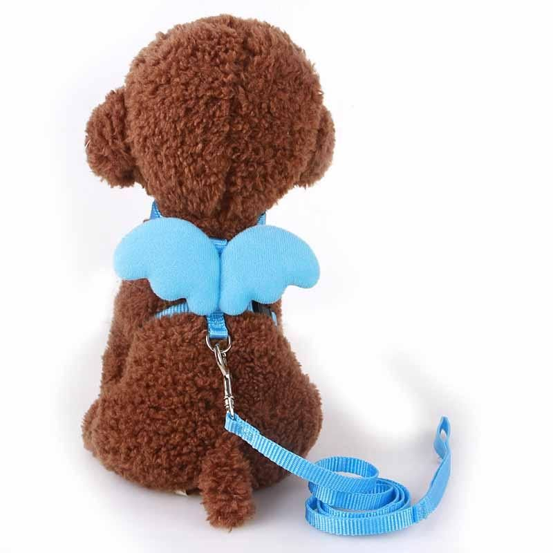 Cute Angel Dog Leashes and Collars Set For Small Dogs