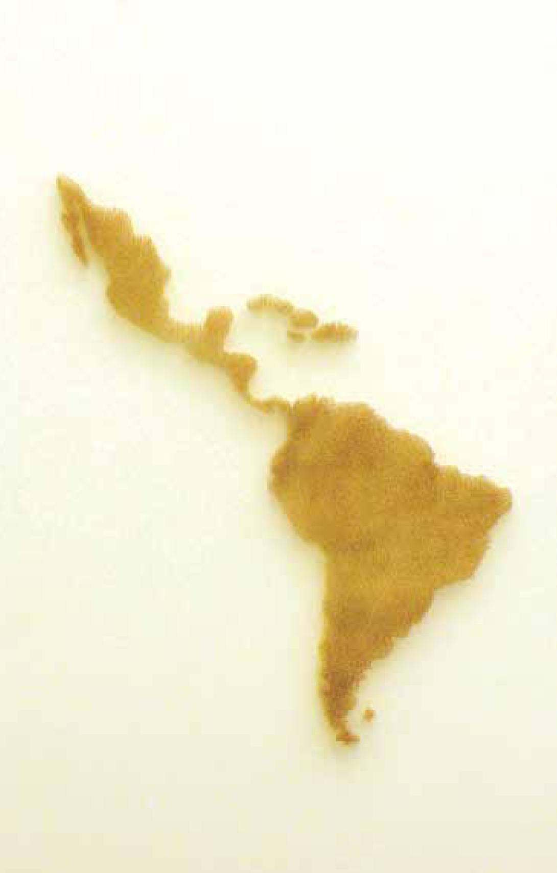 Lester Rodríguez // Honduras // Cartografía // Madera perforada, palillos de dientes