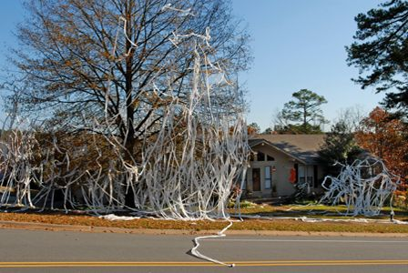 teenagers teepeeing house google search trick or treat for rh pinterest com teepeeing a house illegal tping a house