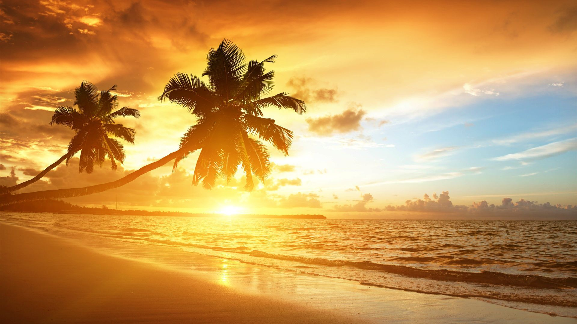 hd beach sunrise beautiful scenery wallpaper wallpapers