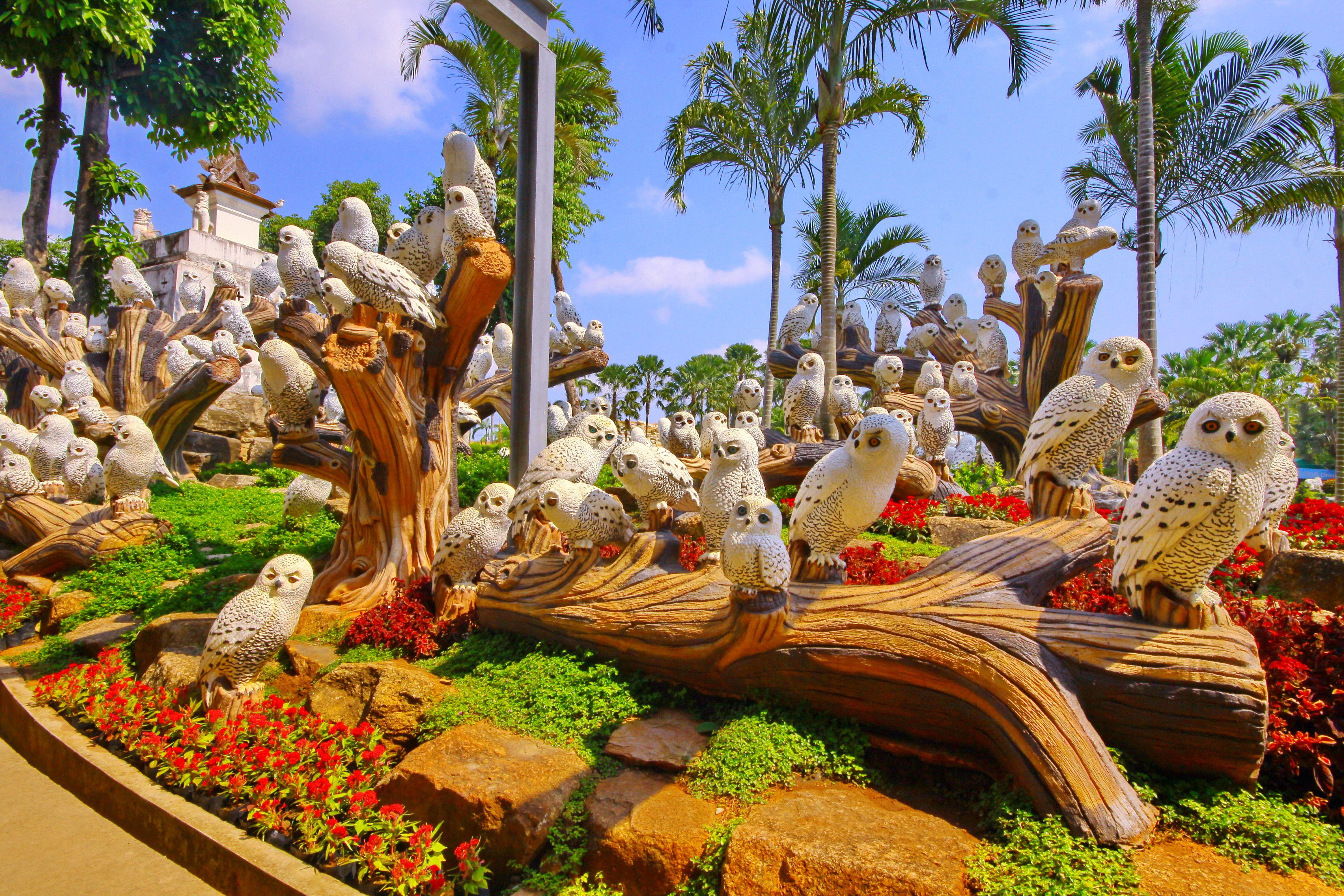 ANIMALS KINGDOM – OWL BY NONGNOOCH PATTAYA TROPICAL GARDEN. ANIMALS ...