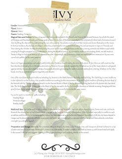 Herbarium: Ivy | Celtic/Voodoo/Hoodoo/Wiccan/Druidic/Psychic/Pagan