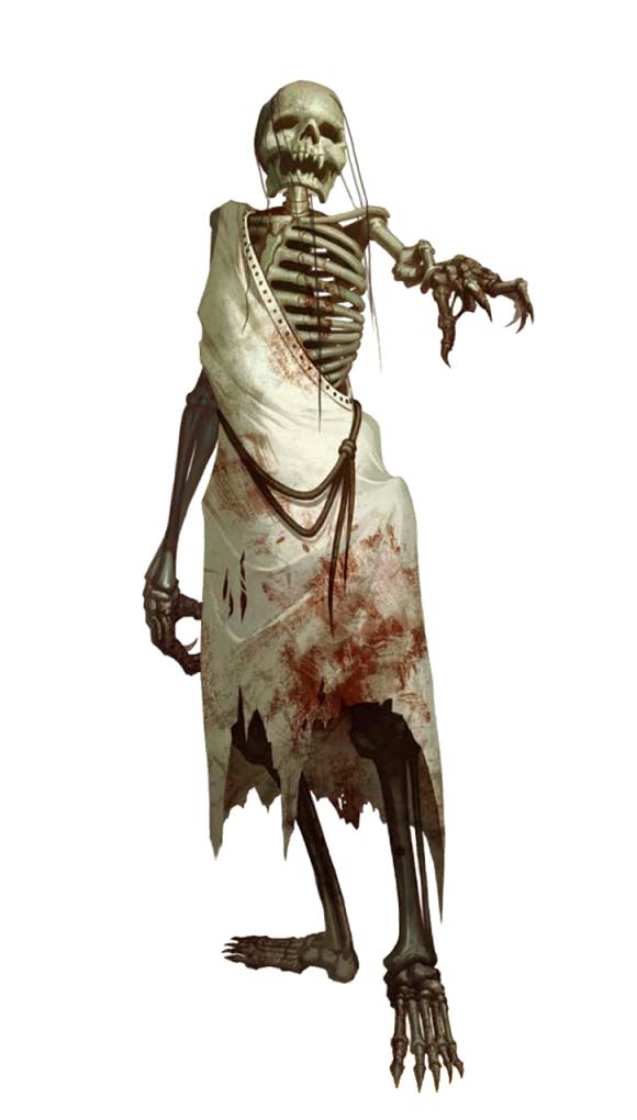 Human Skeleton - Pathfinder PFRPG DND D&D 3 5 5E 5th ed d20