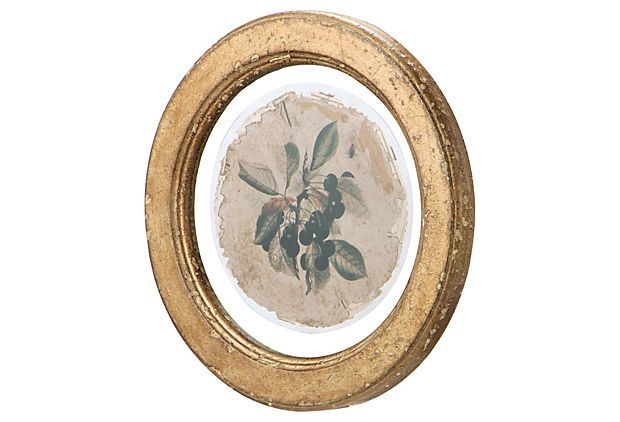 I love this! Wood Framed Botanical Print on OneKingsLane.com   For ...