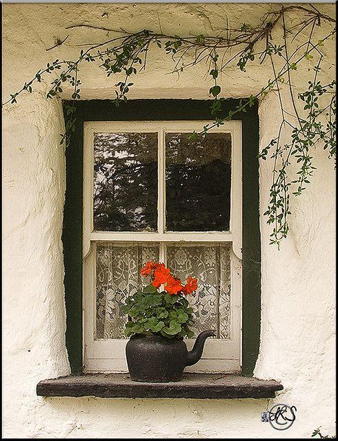 Cottage Window Cottage Windows Windows Windows And Doors