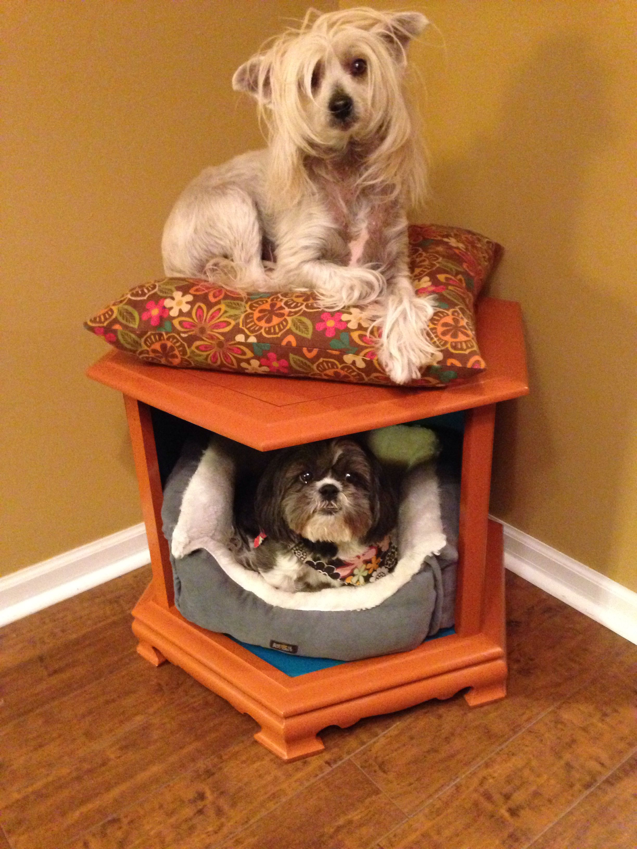 Painted end table/dog bed Diy dog bed, Cool dog beds