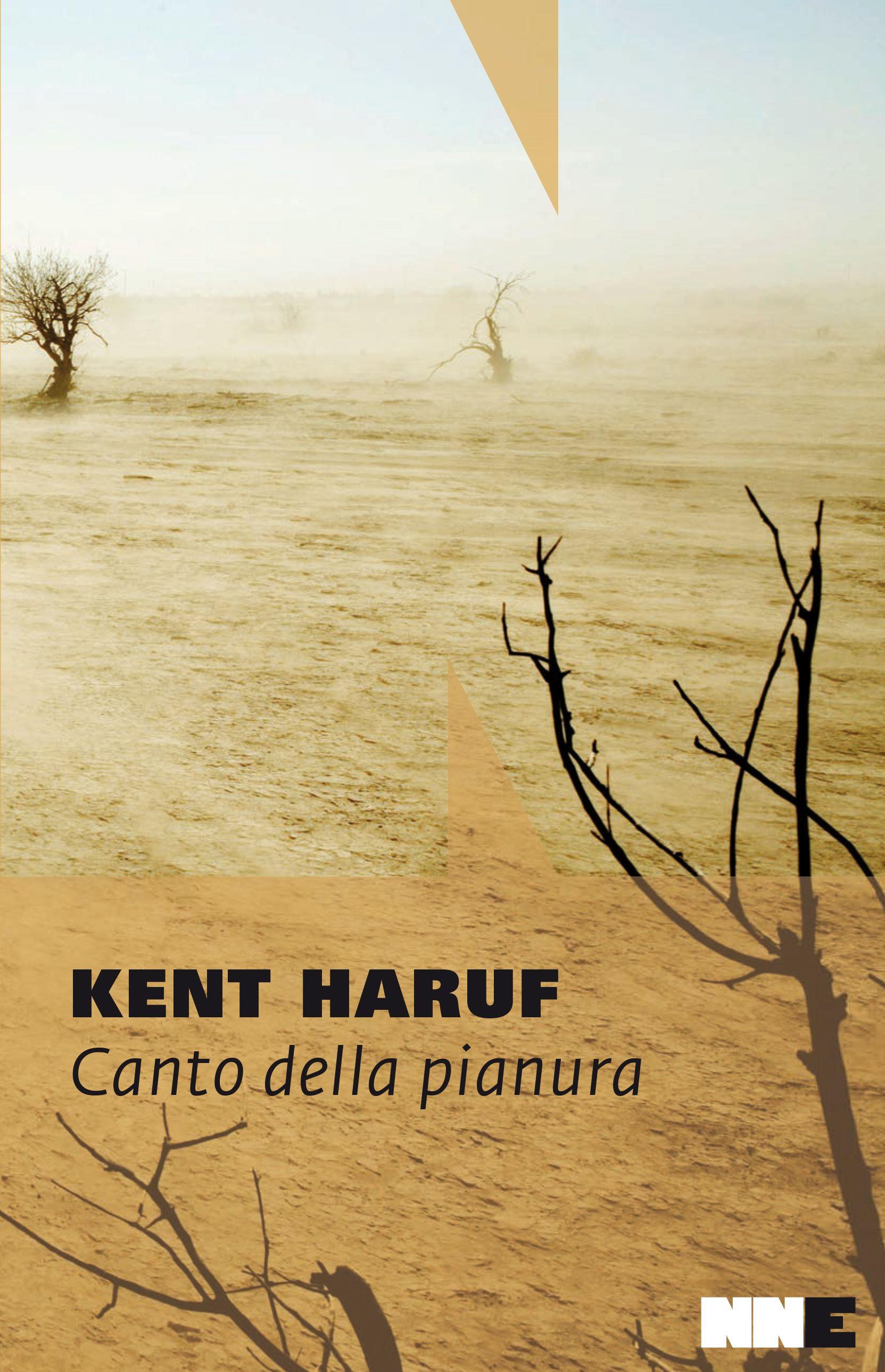 """Il 2015 è agli sgoccioli e """"Canto della pianura"""" è il probabile vincitore del premio """"Libro dell'anno"""""""