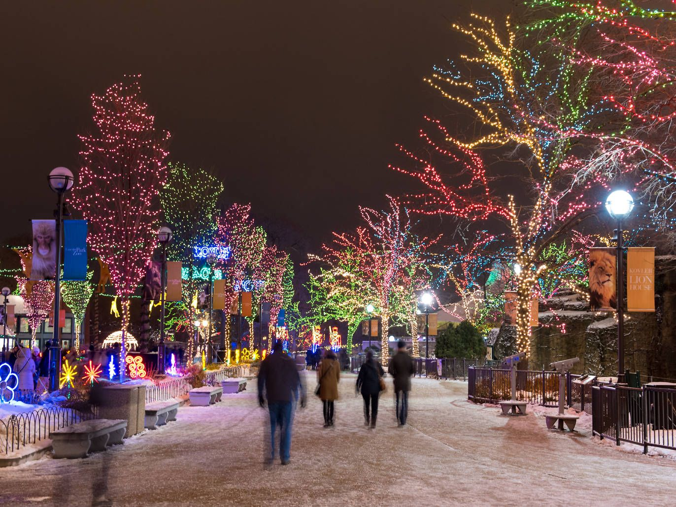 16 Things To Do For Christmas In Chicago Chicago Christmas Lincoln Park Zoo Chicago Zoo Lights