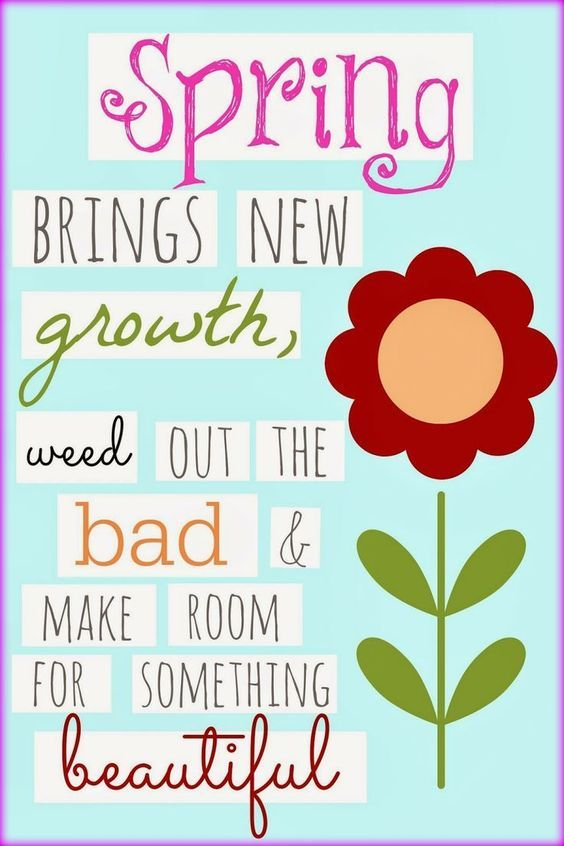 Spring brings new spring quotes springtime quotes happy spring day - Happy spring day image quotes ...