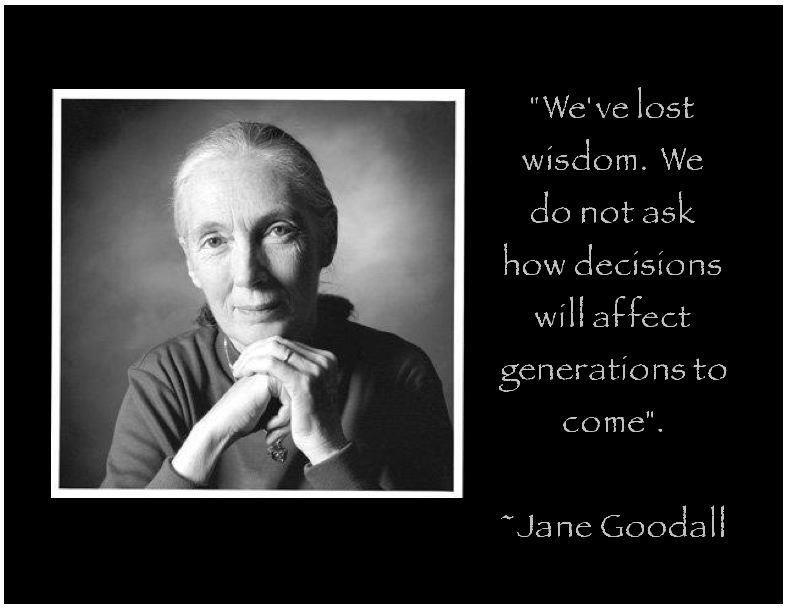 The inspirational Jane Goodall.... Jane goodall, Dian