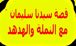 مدونة محمد هدهود قصة سيدنا سليمان عليه السلام In 2020 Blog Blog Posts Post