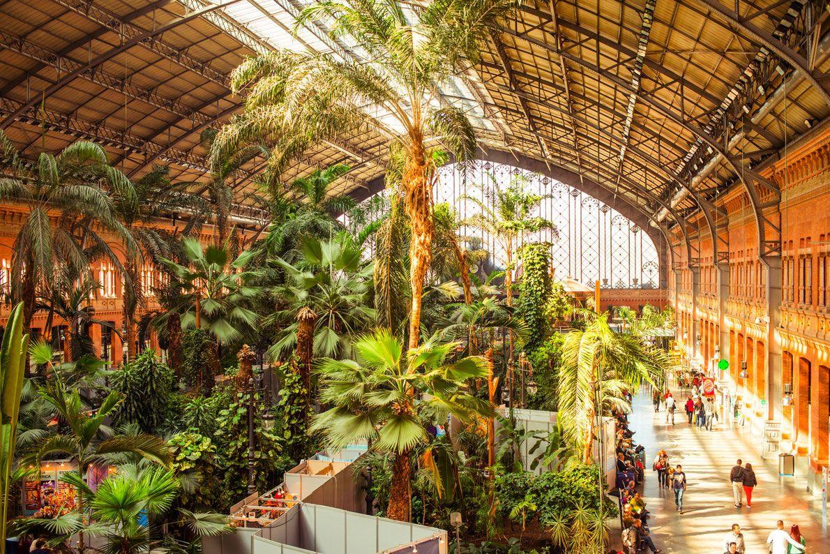 Best Railway Stations In Europe Europe S Best Destinations Antwerpen Cruise Belgie